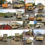 Bus/107820/histirische-busse-bei-sonderfahrten-in-berlin Histirische Busse bei Sonderfahrten in Berlin