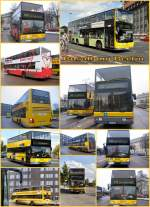 Bus/64051/doppelstockbusse-in-berlin-2005 Doppelstockbusse in Berlin, 2005