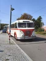 Bus/32454/hist-bus-mit-anhaenger-aus-halle Hist. Bus mit Anhänger aus Halle (Pendelverkehr Museumsdepot Halle - Depot Schkeuditz) am 19.9.2009